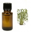 Citronella 10ml