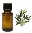 Tea Tree 10ml etherische olie